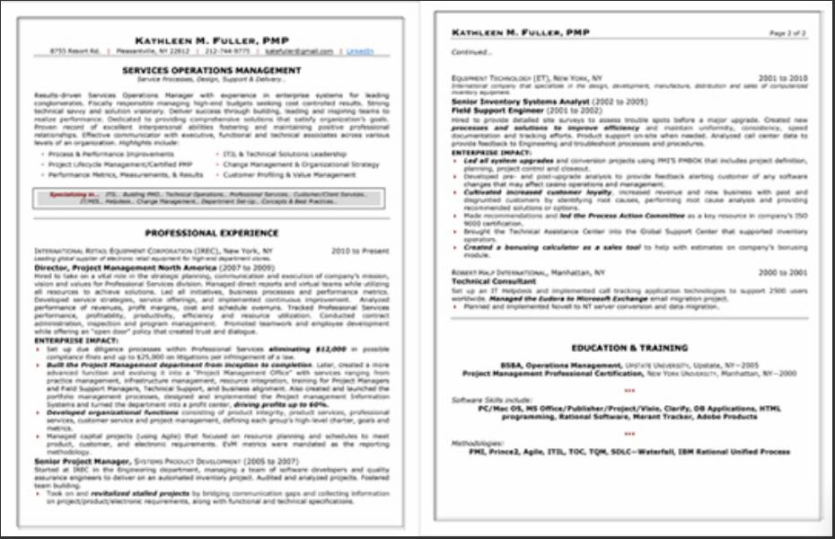 Professional resume services online the best